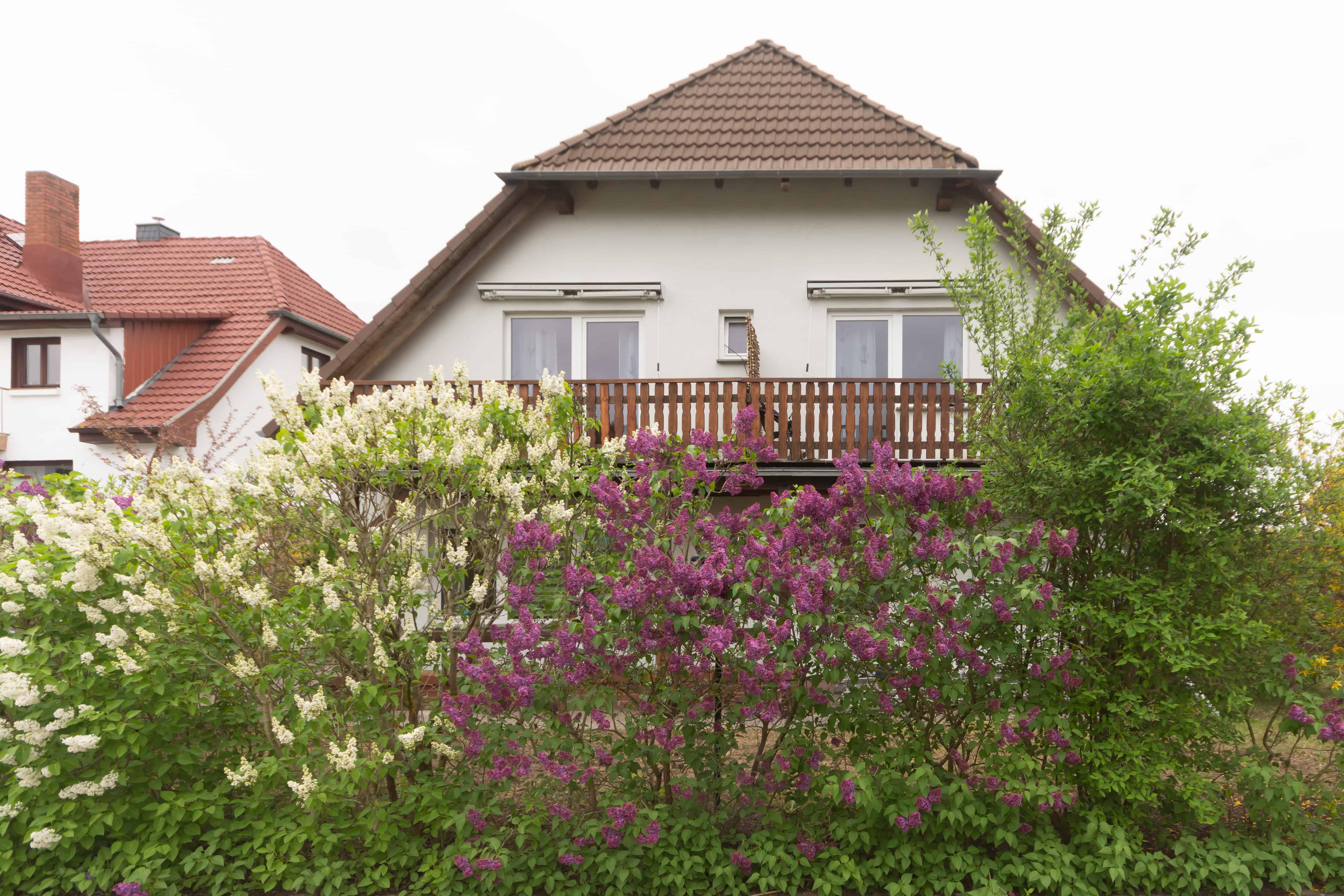 Strandhaus-Malchow-36